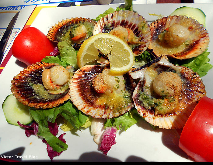 Scallops. Provence, France.