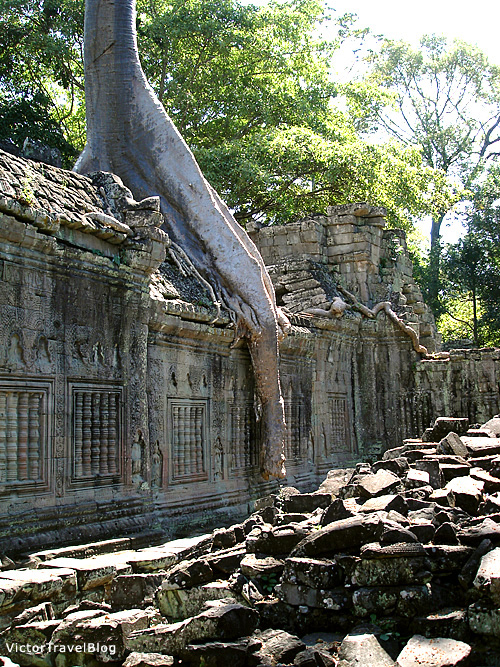 The Ta Prohm Temple. Cambodia.