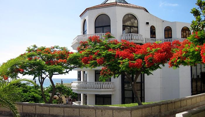 Adeje, Tenerife, Canary Islands