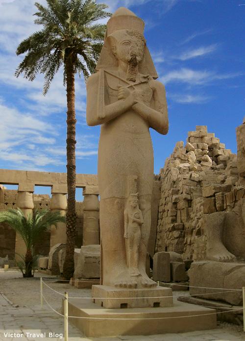 The statue of Ramses II, Luxor Temple