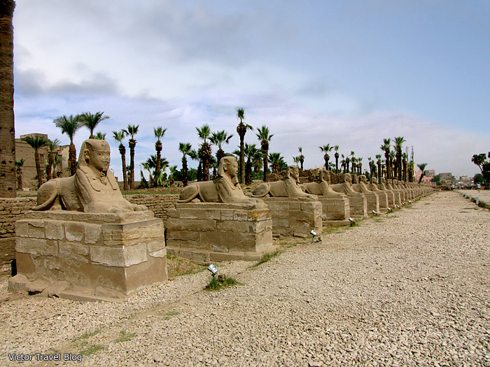 The great Sphinx Alley, Egypt