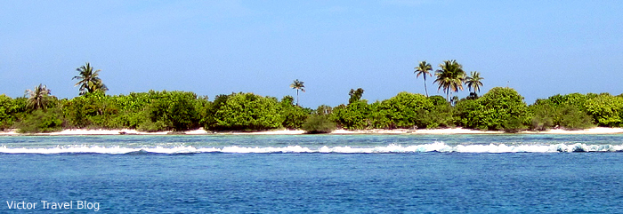 One of the Maldives islands.