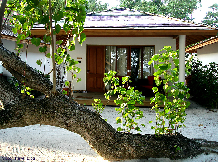 Delux Villa on Vilamendhoo Island Resort and Spa