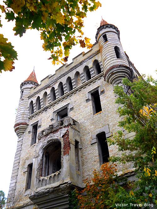 The Russian castle Muromtsevo. The Librarry.