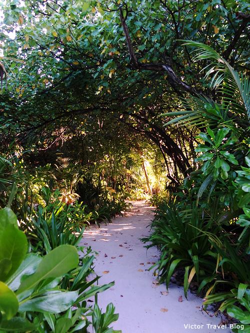 Reethi Beach Resort, the Malfives.