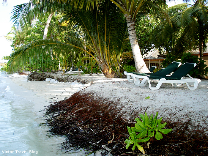 Beach of the Vilamendhoo Island Resort. The Maldives.