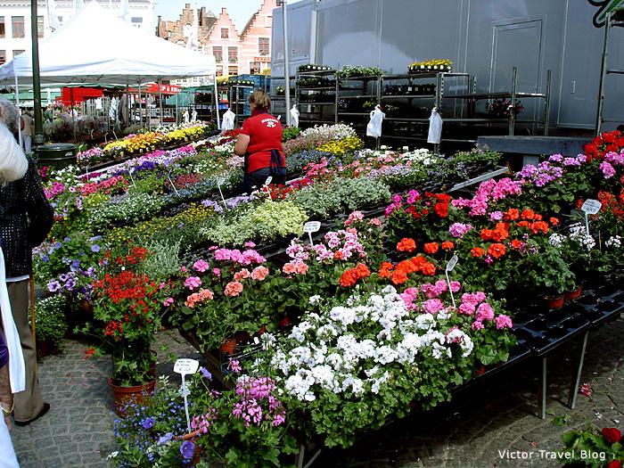 Farming market in Bruges, Belgium.