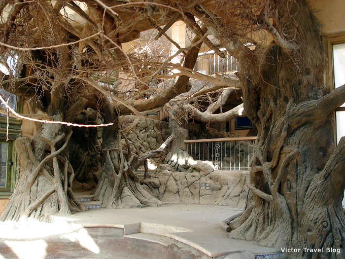 In the abandoned villa of Sheraton Sharm El Sheikh, Egypt.