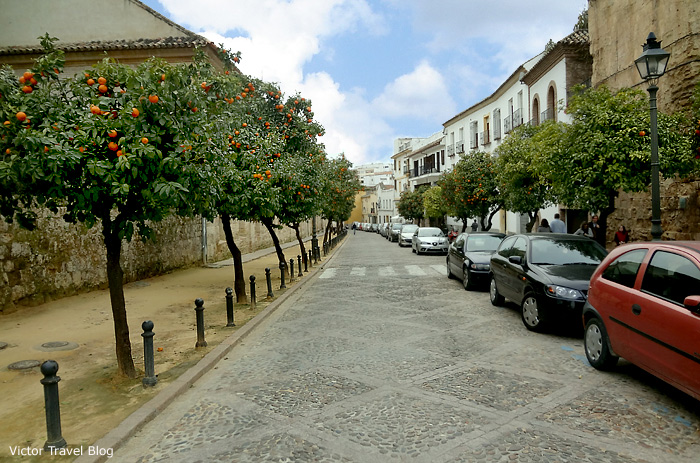 One of the streets of Cordoba, Spain.