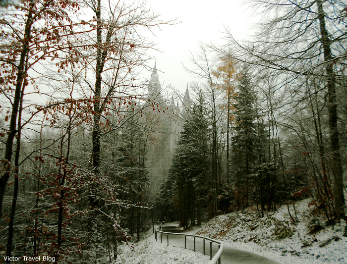 Winter. Neuschwanstein Castle, Bavaria.