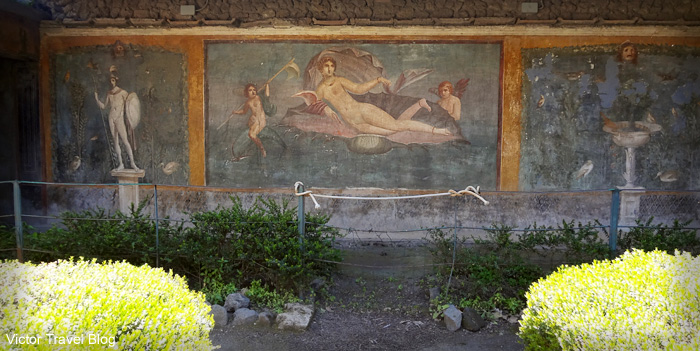 Fresco in the House of Venus. Pompeii, Italy.