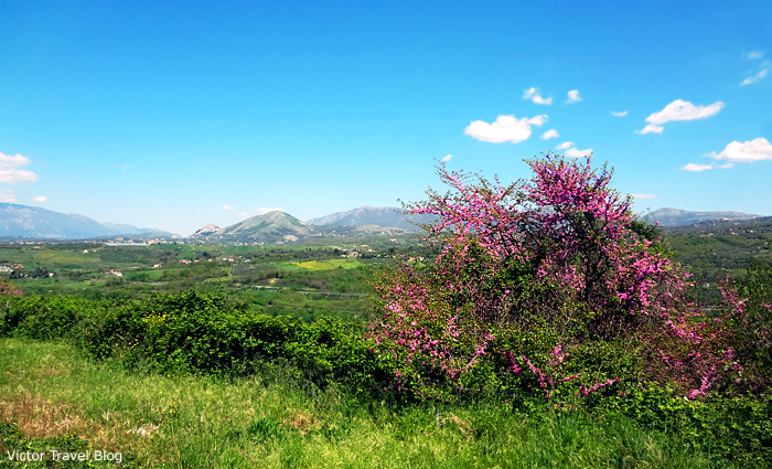 Campania is a region in southern Italy.