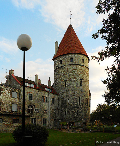 The old town is surrounded by stone walls and distinctive red roofs. Tallinn, Estonia.