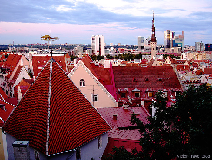 Red roofs of the Old Tallinn, Estonia.