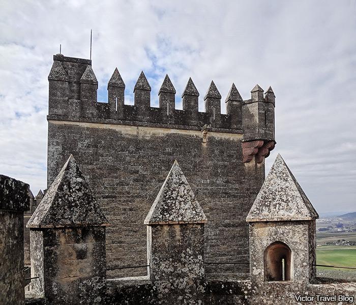 Tower of the Castillo de Almodovar del Rio. Andalusia, Spain.