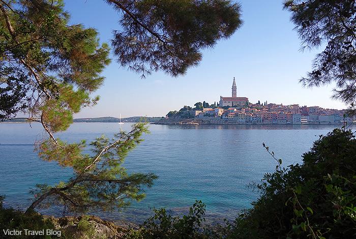 View of Rovinj from Sveta Katarina Island. Istria, Croatia.