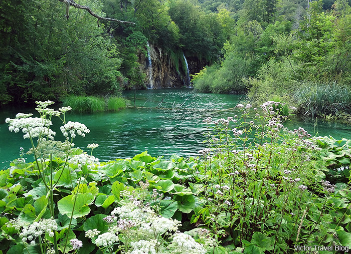 A waterfall. Plitvice Lake National Park. Croatia.