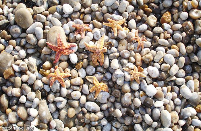 Gravel on the beach of Etretat. Normandie, France.