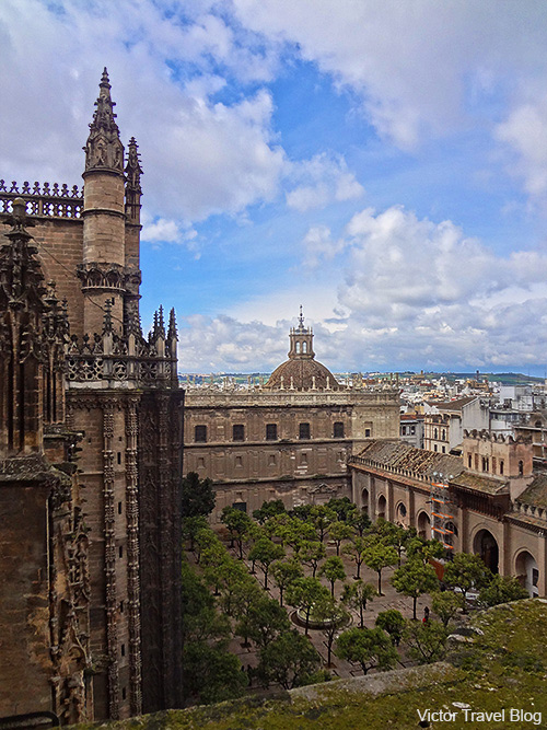 View of Seville from the Cathedral. Spain.