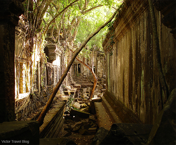 The Beng Mealea temple. Angkor Archaeological Park. Siem Reap Province of Cambodia.