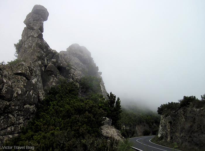 La Gomera, Canary Islands, Spain.