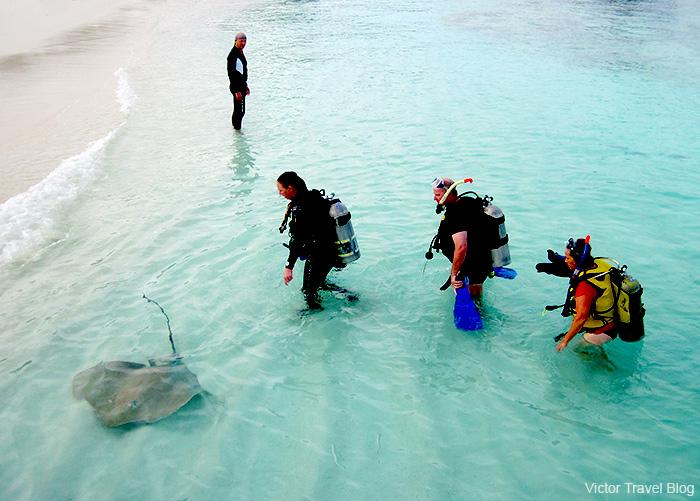 German tourists. Reethi Beach. The Maldives.
