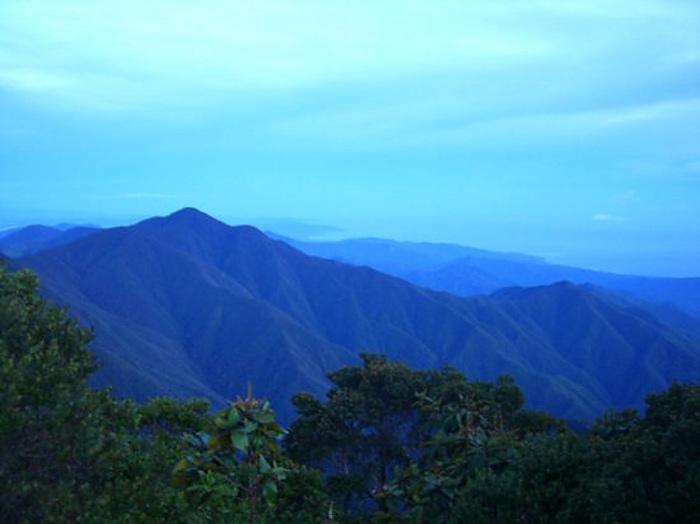Blue Mountains. Jamaica.