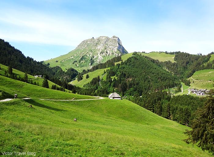 Moleson sur Gruyères. Switzerland.