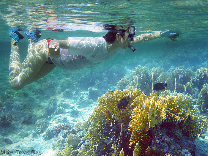 Snorkeling in the Red Sea. El Gouna, Egypt.
