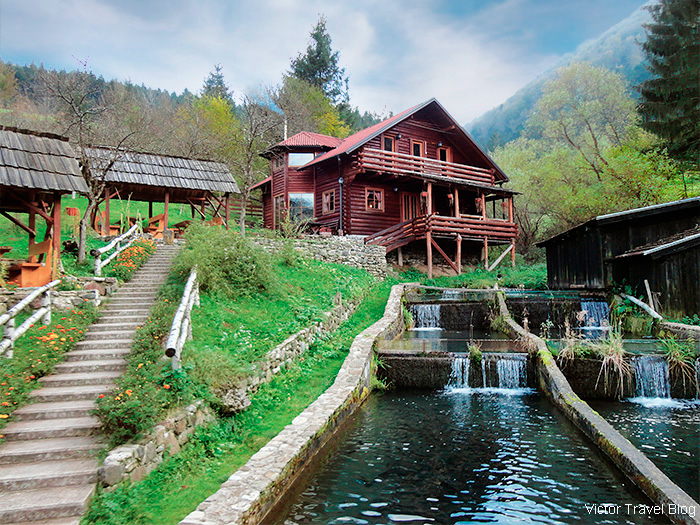 The Luis' trout farm. Bosnia.