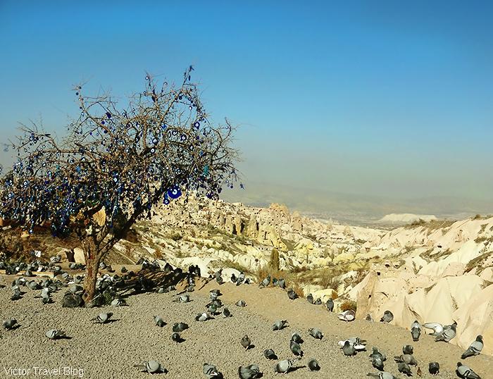 Landscape of Cappadocia, Turkey.