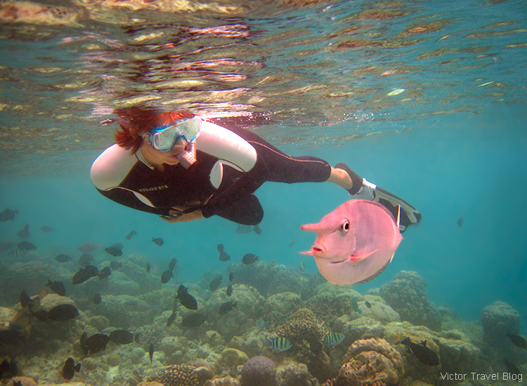 Irina and a very curious fish. Fihalhohi Island Resort, the Maldives.