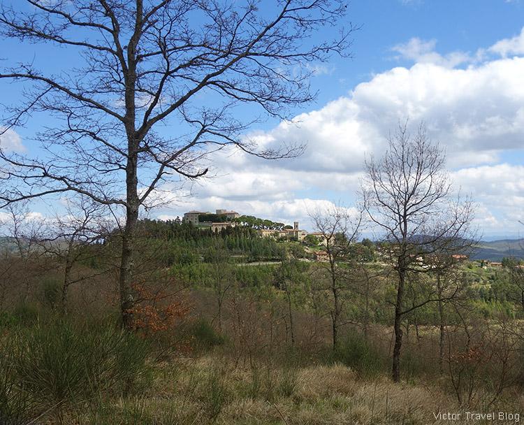 Fields of Umbria, Italy.