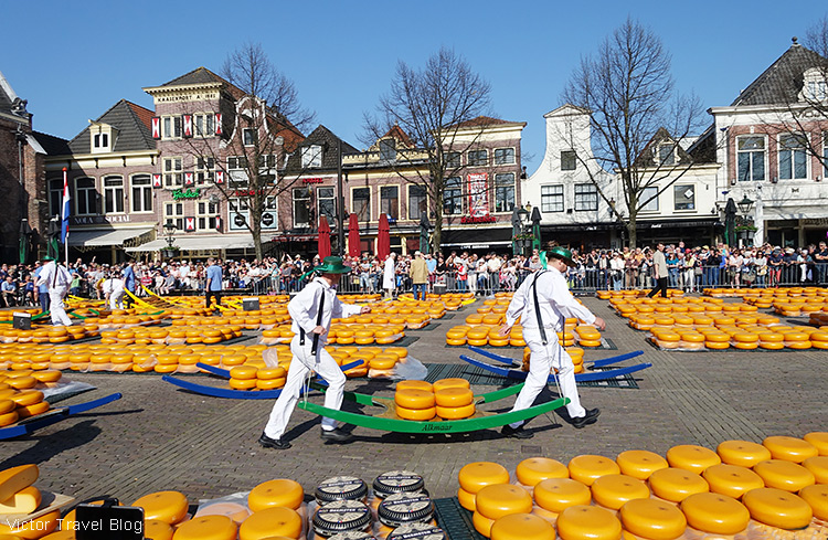 Cheese porters. The Alkmaar cheese market, the Netherlands.