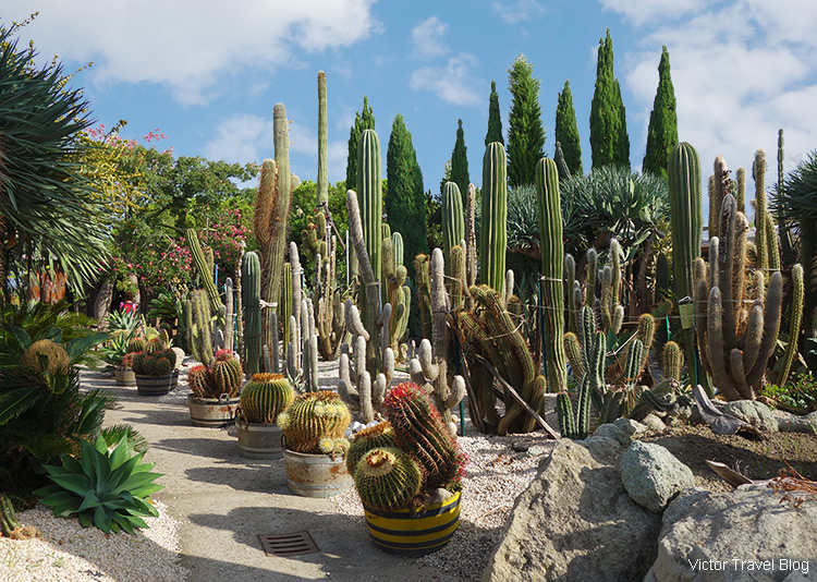 Cactus Park, Ischia, Italy.